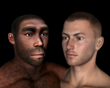 homo erectus: Homo erectus and sapiens comparison - 3D render Stock Photo
