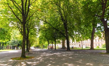 city park: Bastions park in summer with beautiful big trees, Geneva, Switzerland