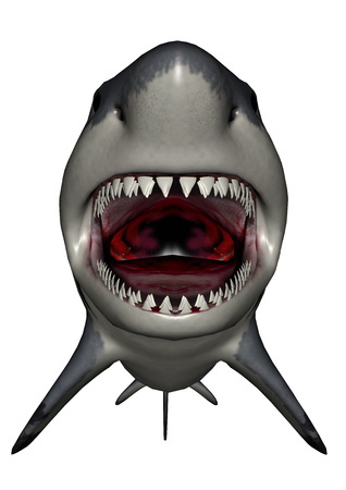 shark: Megalodon dinosaur mouth - 3D render