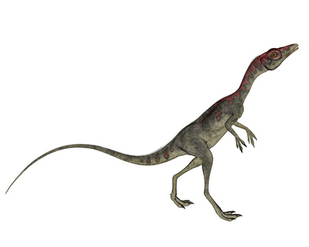 Compsognathus dinosaur walking - 3D render