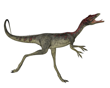 Compsognathus dinosaur running in white background- 3D render