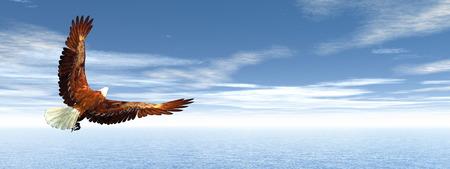 eagle flying: Eagle flying - 3D render Stock Photo
