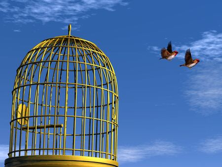 bird wing: Freedom - 3D render Stock Photo