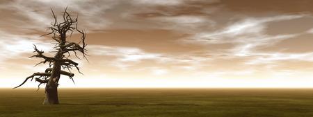 wasteland: Dead trees - 3D render