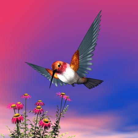 hummingbird: Rufous hummingbird - 3D render