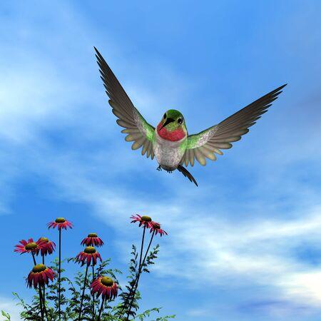 ruby throated: Ruby-throated hummingbird - 3D render
