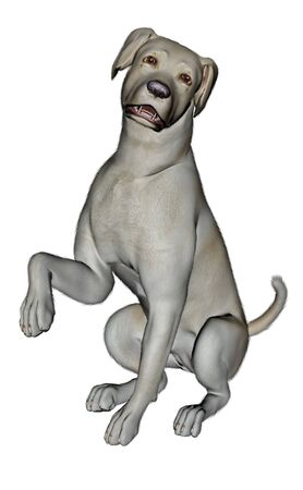 sad dog: Sad labrador dog sitting - 3D render