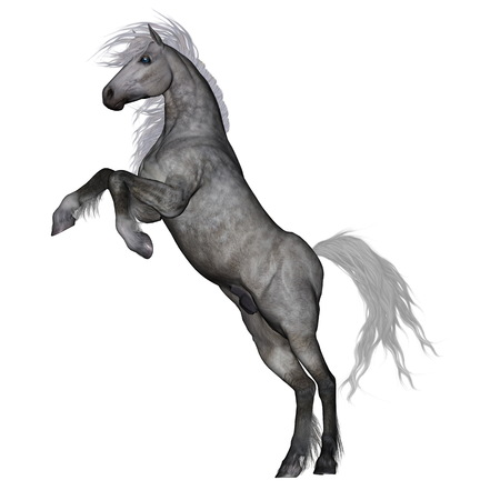 rearing: White horse rearing - 3D render