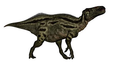 herbivorous animals: Shantungosaurus dinosaur - 3D render