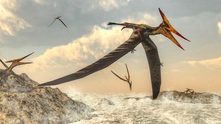 pteranodon: Pteranodon birds flying - 3D render