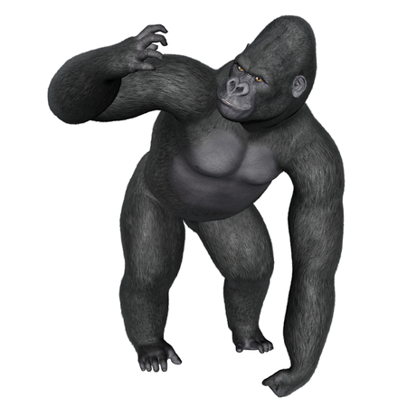 dangerous: Angry gorilla isolated in white background - 3D render