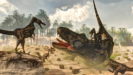 Tarbosaurus attacked by velociraptor dinosaurs next to nipa plants and araucaria trees by day - 3D render Banque d'images