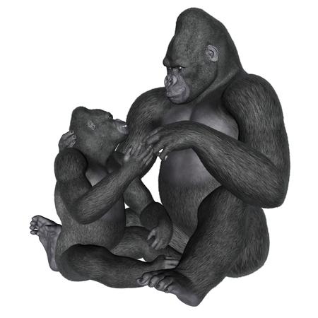 motherhood: Gorilla motherhood isolated in white background - 3D render Stock Photo