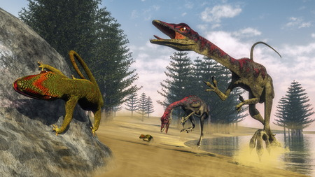 Compsognathus dinosaur hunting a gecko in a lagoon with calamite trees by day - 3D render Фото со стока