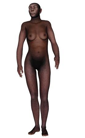 erectus: Hombre homo erectus caminar aislado en el fondo blanco - 3D render