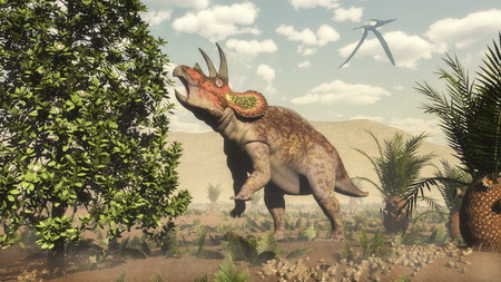 Triceratops eating at magnolia tree next to cycas by day  - 3D render
