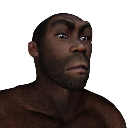 hominid: Male homo erectus angry portrait isolated in white background - 3D render