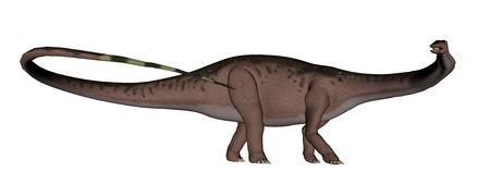herbivorous animals: Apatosaurus dinosaur running isolated in white background - 3D render