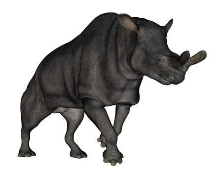 hoofed: Brontotherium or megacerops dinosaur walking isolated in white background - 3D render
