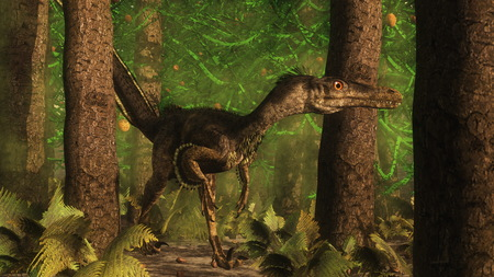 Velociraptor dinosaur observing in a araucaria tree forest - 3D render Imagens