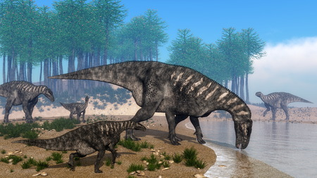 herd: Iguanodon dinosaurs herd walking at the shoreline in front of araucaria trees abd surrounded with onychiopsis plants by day - 3D render