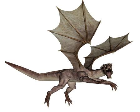 3d dragon: Dragon roaring in white background - 3D render