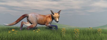 carnivore: Fox walking in the grass with flowers by sunset - 3D render