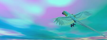 macaw: Military macaw, parrot, flying flying in blue sky - 3D render Stock Photo