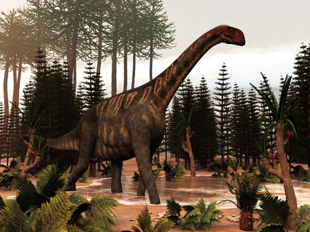 cycas: Jobaria dinosaur walking to a little pond and among wollemia, calamite and cycas plants - 3D render