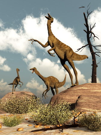 herd: Gallimimus dinosaurs herd in the desert by day - 3D render
