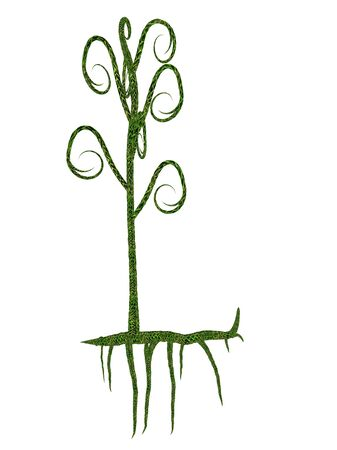 carboniferous: Asteroxylon mackiei prehistoric plant isolated in white background - 3D render