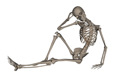 frontview: Frontview of handsome human skeleton isolated in white background - 3D render
