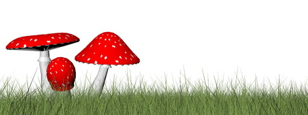 food poison: Red mushrooms in the grass isolated in white background - 3D render