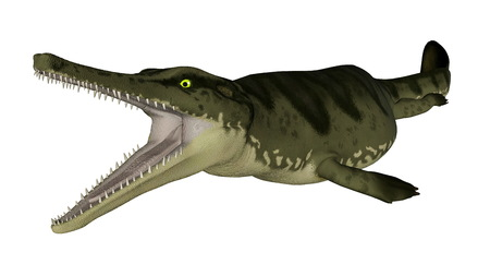 prehistoric fish: Metriorhynchus prehistoric fish open mouth isolated in white background - 3D render Stock Photo