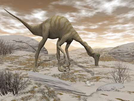 discovering: Gallimimus dinosaur discovering eggs in the desert by brown sunset - 3D render