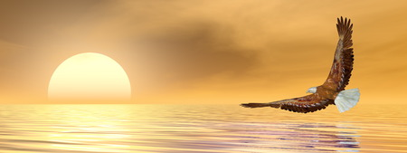 Eagle flying to the sun upon the ocean by brown sunset - 3D render