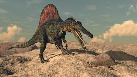 spinosaurus: Spinosaurus dinosaur hunting a snake in the desert by sunset - 3D render Stock Photo