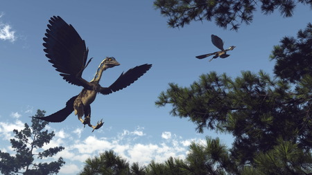 Archaeopteryx birds dinosaurs flying among pine trees - 3D render Stock Photo