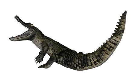 Caiman roaring up - 3D render