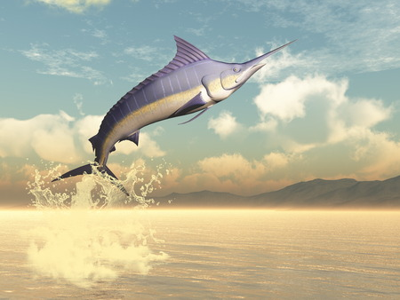 billfish: Marlin fish jumping by sunset - 3D render Stock Photo