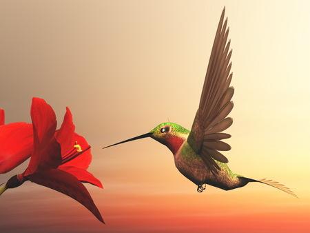 Ruby-throated hummingbird - 3D render