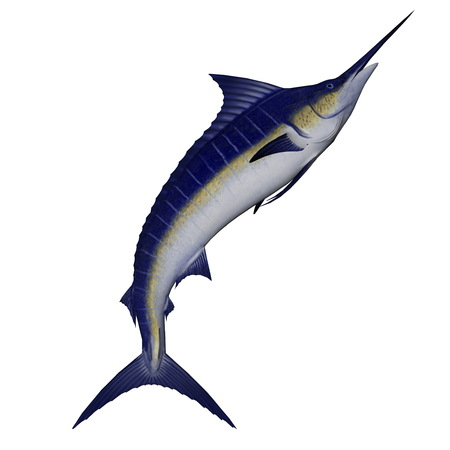 Marlin fish jump - 3D render