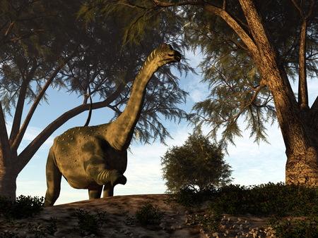 Antarctosaurus dinosaur - 3D render Stock Photo
