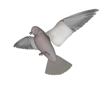 Taube fliegen - 3D render Standard-Bild - 88753902