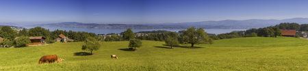 Zürcher Kanton Landschaft, Schweiz Standard-Bild - 87954924