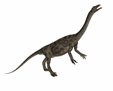 Anchisaurus dinosaur -3D render Stock Photo
