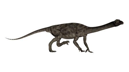 Anchisaurus Dinosaurier -3D übertragen Standard-Bild - 88936818