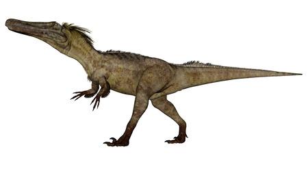 Austroraptor dinosaur -3D render
