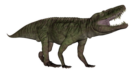 Batrachotomus dinosaur roaring -3D render Stock Photo