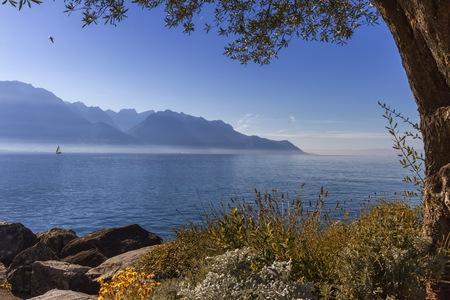 Alpenberge nach Geneva See, Montreux, die Schweiz Standard-Bild - 89353546